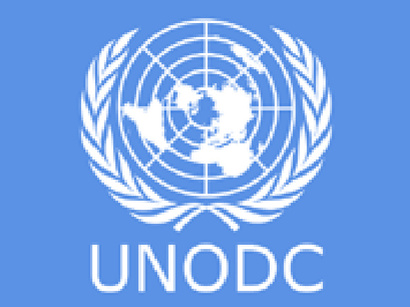 Office des Nations Unies contre la drogue et le crime - logo